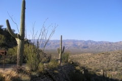 northwest-side-tucson-arizona-trails-6