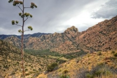 dragoons-to-east-cochise-stronghold-trails-tucson-arizona-6