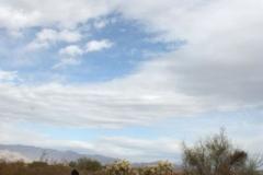 Fantasy Island - Tucson, Arizona (6)