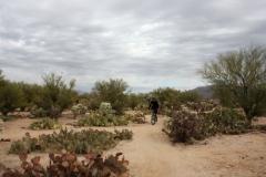 Fantasy Island - Tucson, Arizona (2B)