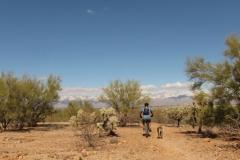 Fantasy Island - Tucson, Arizona (8)