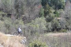 imba-epic-to-gardner-canyon-to-kentucky-camp-to-keyhole-trails-tucson-arizona-11