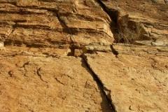 la-milagrosa-trails-tucson-arizona-11