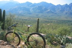 Tucson Mountain Park (1)