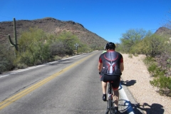 Tucson Mountain Park (10)