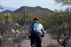 Tucson Mountain Park (9)