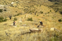 mt-lemmon-u2013-az-trail-u2013-molino-basin-to-italian-trap-4