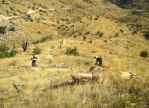 Mt Lemmon – Molino Basin to Italian Trap (3C – 3D)