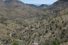 mt-lemmon-u2013-az-trail-u2013-prison-camp-to-molino-basin-5
