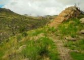 Mt Lemmon/AZ Trail/Prison Camp - Molino Basin