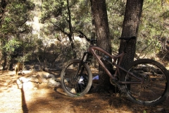 mt-lemmon-u2013-bug-springs-1