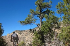 mt-lemmon-u2013-bug-springs-2