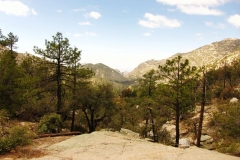 mt-lemmon-u2013-green-mountain-7