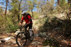 mt-lemmon-u2013-green-mountain-8