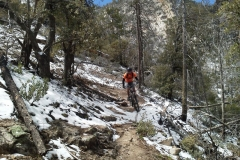 mt-lemmon-u2013-green-mountain-9
