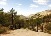 Mt Lemmon – Green Mountain Trails (3C through 3D)