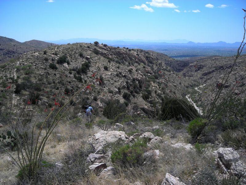 mt-lemmon-u2013-molino-basin-to-italian-trap-tucson-arizona-1