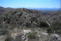 mt-lemmon-u2013-molino-basin-to-italian-trap-tucson-arizona-1