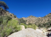 Mt Lemmon/AZ Trail/Molino Basin - Italian Trap