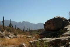 rail-x-and-honeybee-canyon-2