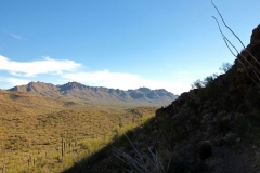 Starr Pass Tucson (12)