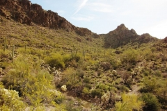 Starr Pass Trails - Tucson Arizona (2B to 3C)
