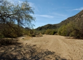 Tortolita Preserve – Dove Mountain Trails (2B)
