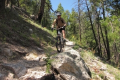 Mountain Biking in Tucson Arizona