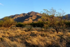 West Desert Trails - Tucson, Arizona (12)