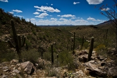 West Desert Trails - Tucson, Arizona (2B to 3B)