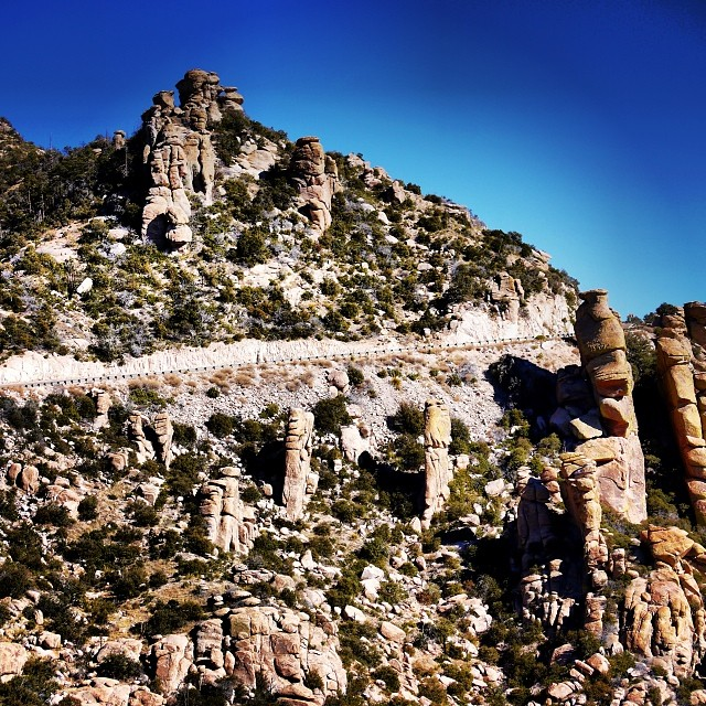 Tucson road biking nirvana: mile 15 of this climb is spectacular.