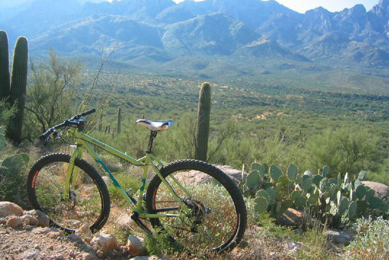 Tucson Mountain Park Mountain Bike Trails
