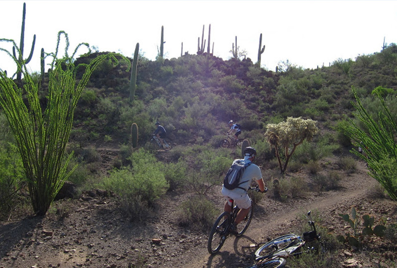 Tortolita Preserve – Dove Mountain Bike Trails